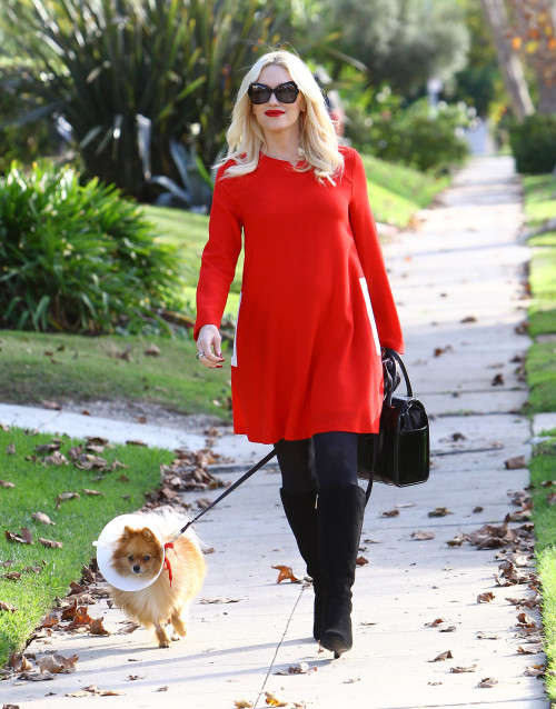 Gwen Stefani: Lady In Red