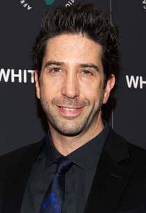 Friends Alum David Schwimmer Plots Return to TV in ABC Pilot Irreversible