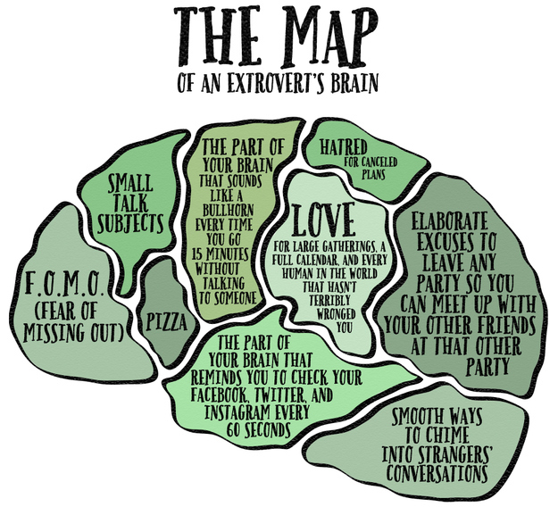 This Is What The Brain Of Every Extrovert Looks Like