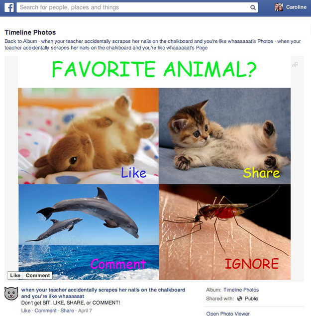 """Facebook Takes Aim At """"Like-Baiting"""" And Spam"""