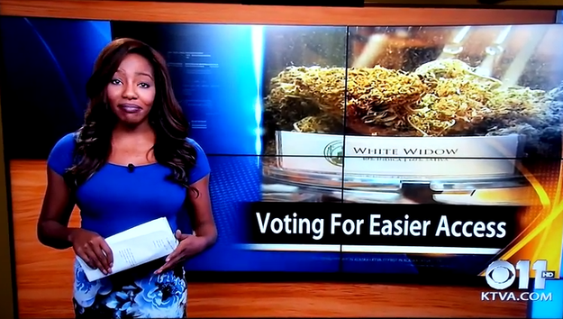 """TV Reporter Declares """"F*ck It, I Quit"""" Live On Air To Concentrate On Campaign To Legalise Marijuana"""